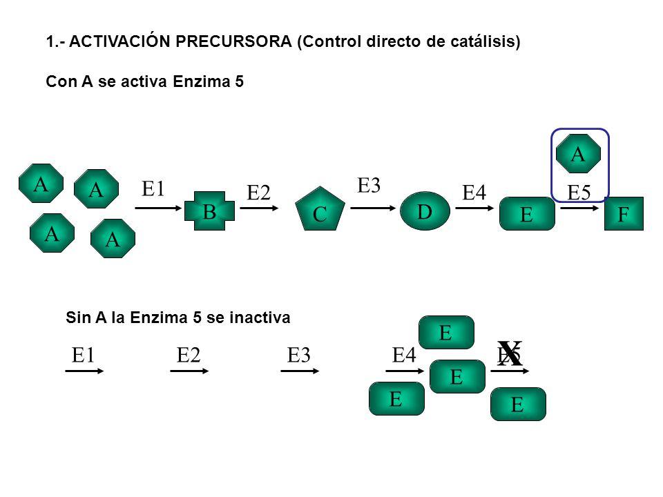X A A A E1 E2 E3 E4 E5 C B D E F A A E E1 E2 E3 E4 E5 E E E