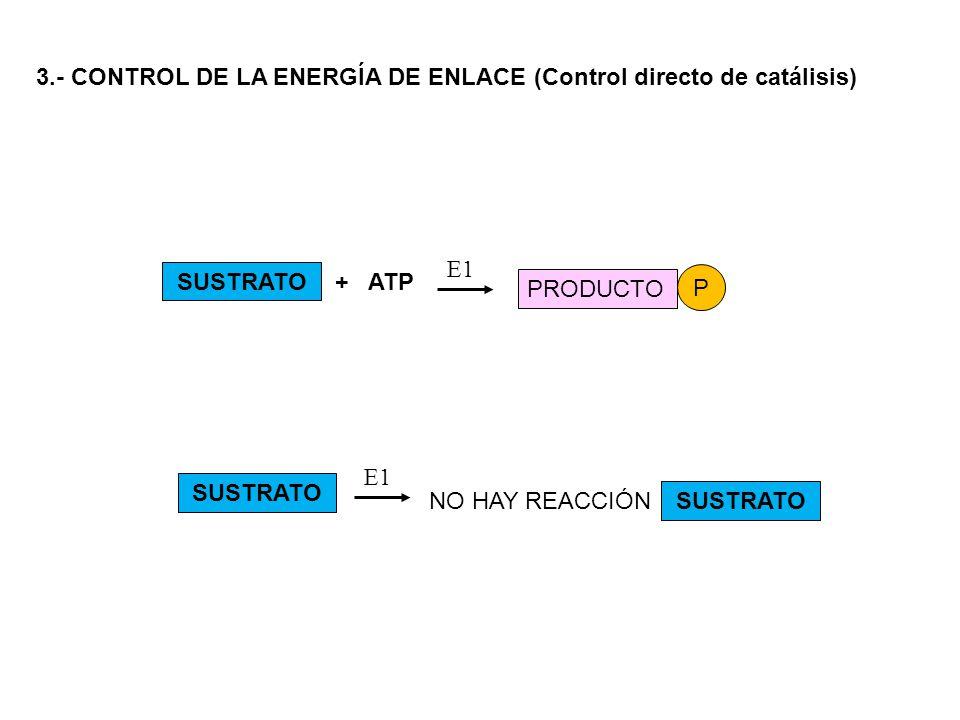 3.- CONTROL DE LA ENERGÍA DE ENLACE (Control directo de catálisis)