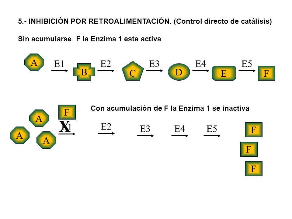 X A E1 E2 E3 E4 E5 C B D E F F A E1 E2 E3 E4 E5 F A A F F