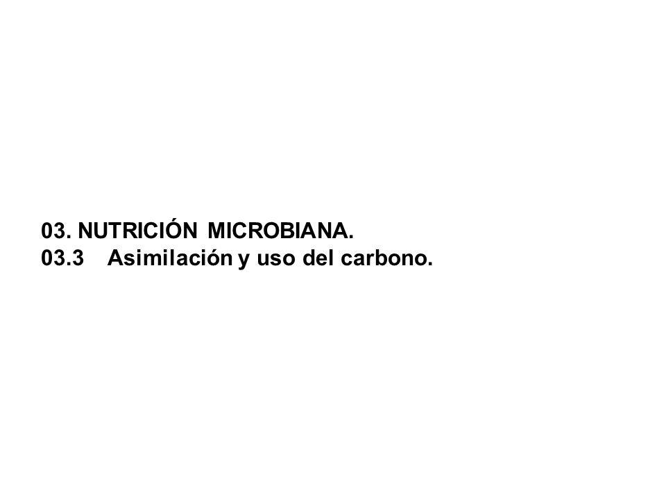 03. NUTRICIÓN MICROBIANA. 03.3 Asimilación y uso del carbono.
