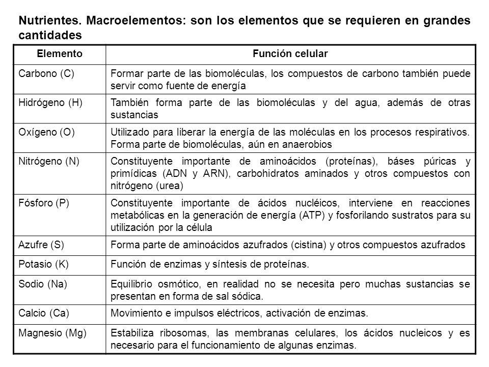Nutrientes. Macroelementos: son los elementos que se requieren en grandes cantidades
