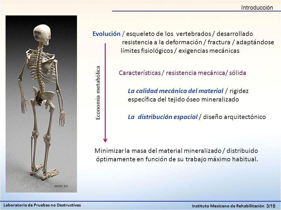 Características / resistencia mecánica/ sólida