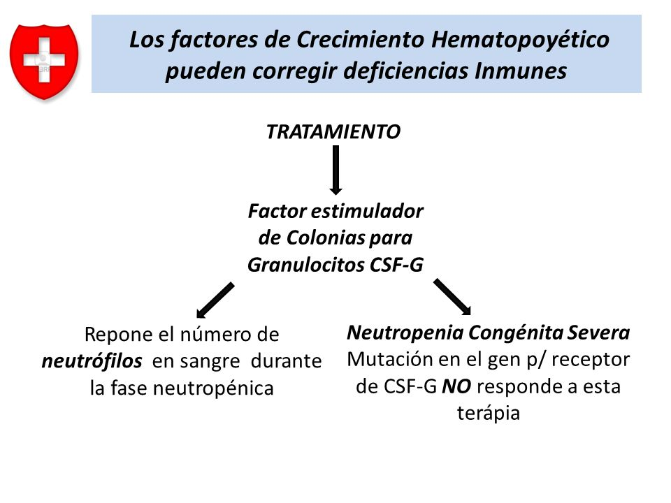 Factor estimulador de Colonias para Granulocitos CSF-G
