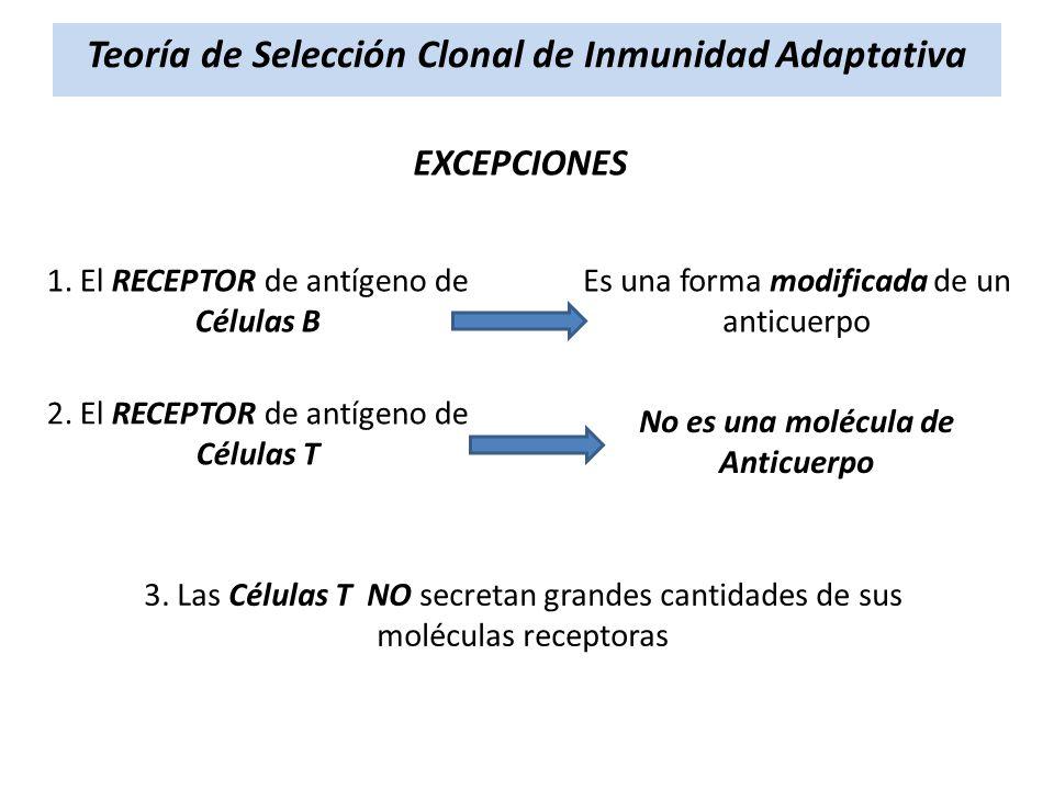 Teoría de Selección Clonal de Inmunidad Adaptativa