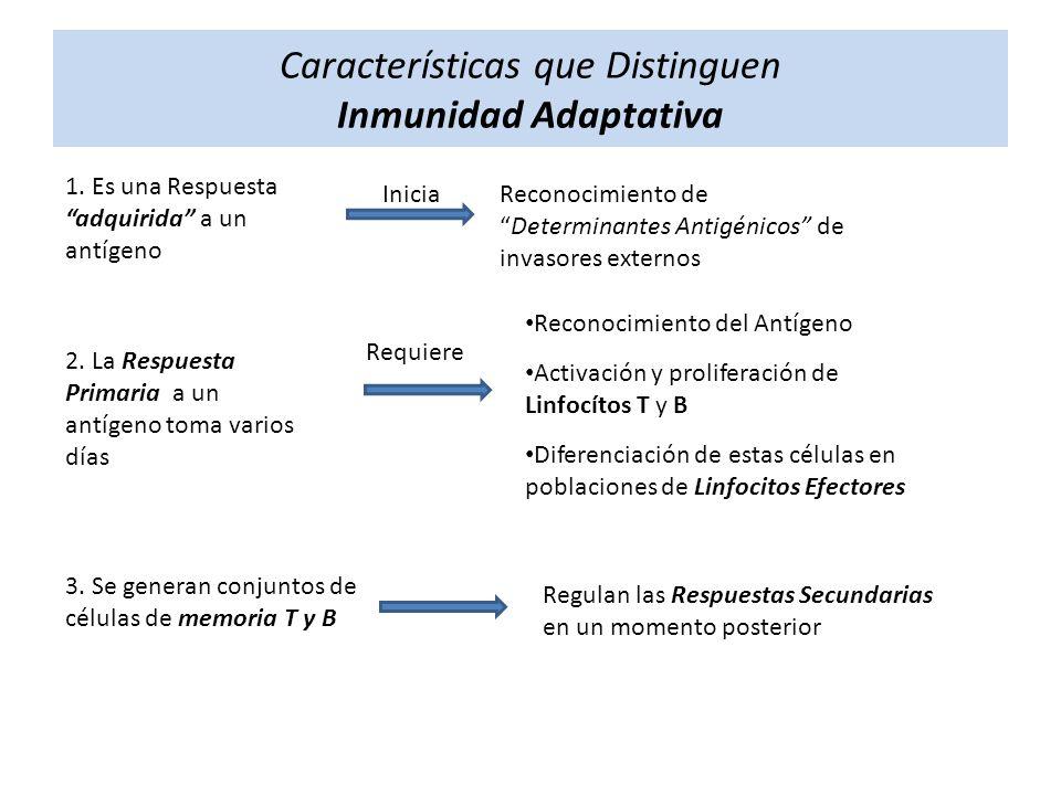 Características que Distinguen Inmunidad Adaptativa
