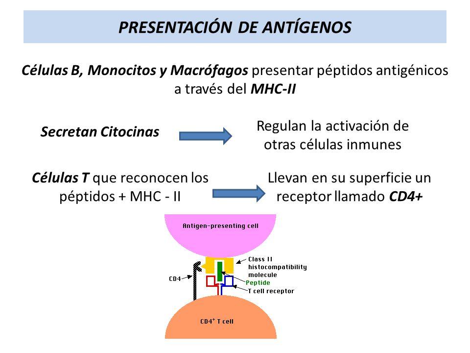 PRESENTACIÓN DE ANTÍGENOS