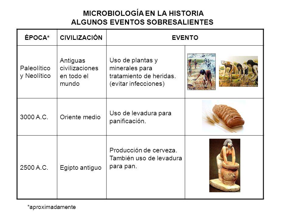 MICROBIOLOGÍA EN LA HISTORIA