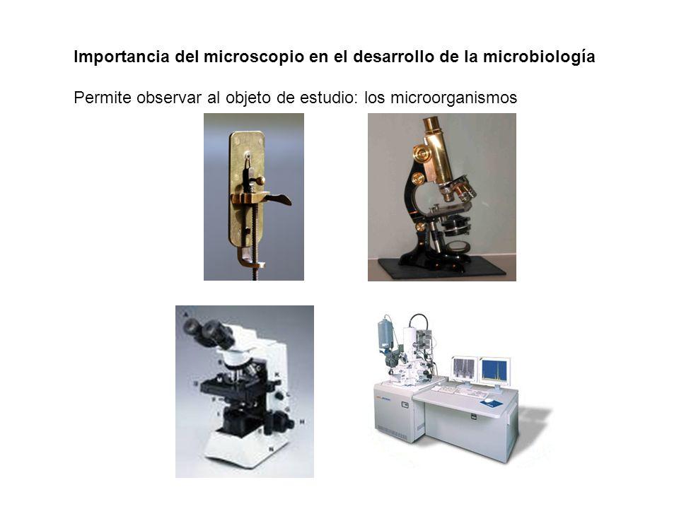 Importancia del microscopio en el desarrollo de la microbiología