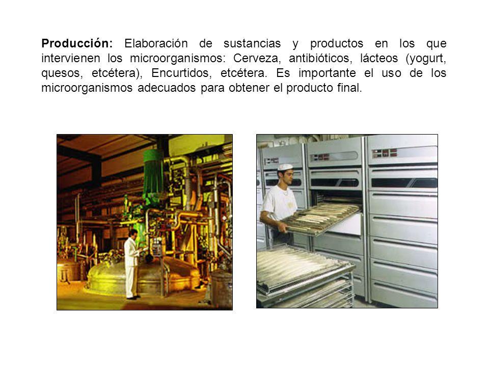 Producción: Elaboración de sustancias y productos en los que intervienen los microorganismos: Cerveza, antibióticos, lácteos (yogurt, quesos, etcétera), Encurtidos, etcétera.