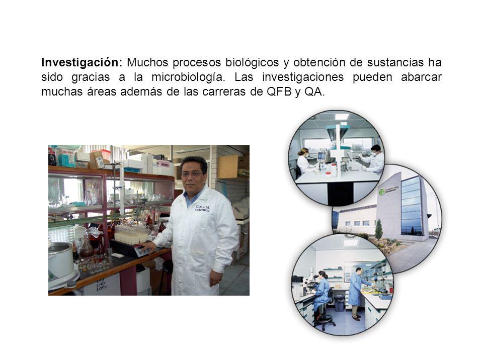 Investigación: Muchos procesos biológicos y obtención de sustancias ha sido gracias a la microbiología.