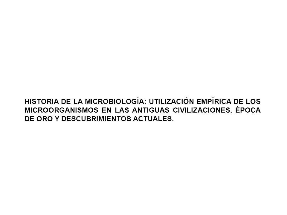 HISTORIA DE LA MICROBIOLOGÍA: UTILIZACIÓN EMPÍRICA DE LOS MICROORGANISMOS EN LAS ANTIGUAS CIVILIZACIONES.