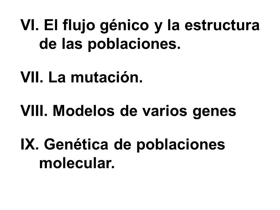 VI. El flujo génico y la estructura de las poblaciones.