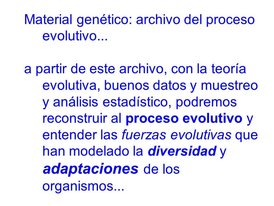 Material genético: archivo del proceso evolutivo...