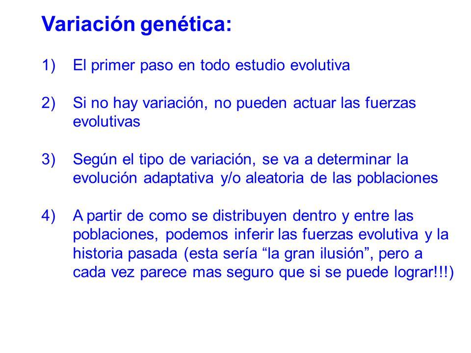 Variación genética: El primer paso en todo estudio evolutiva