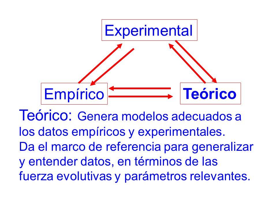 Experimental Empírico Teórico