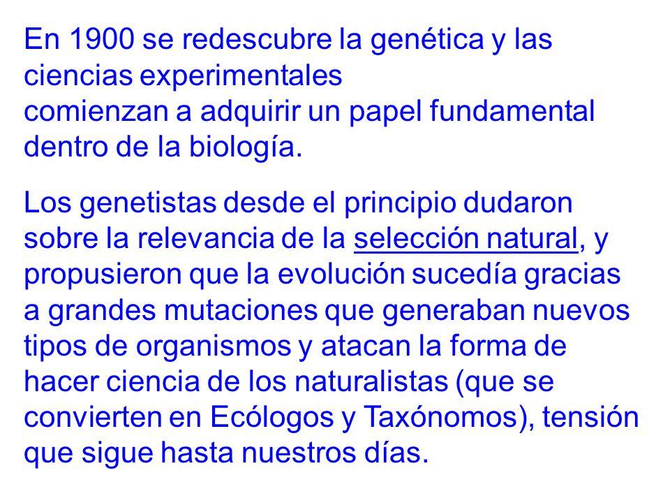 En 1900 se redescubre la genética y las ciencias experimentales