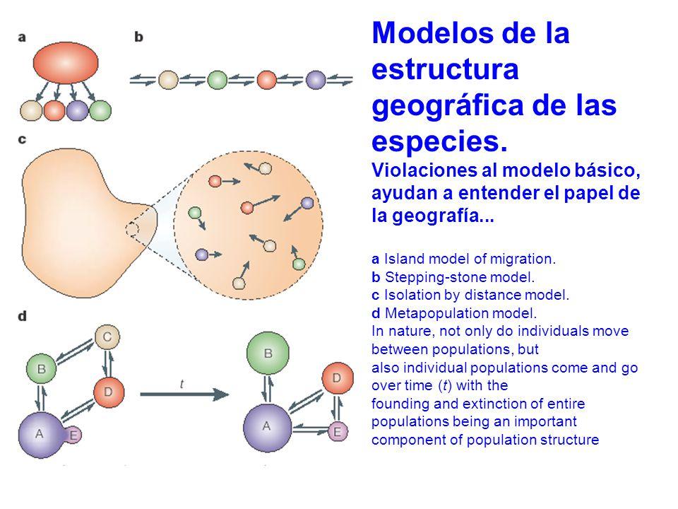 estructura geográfica de las especies.