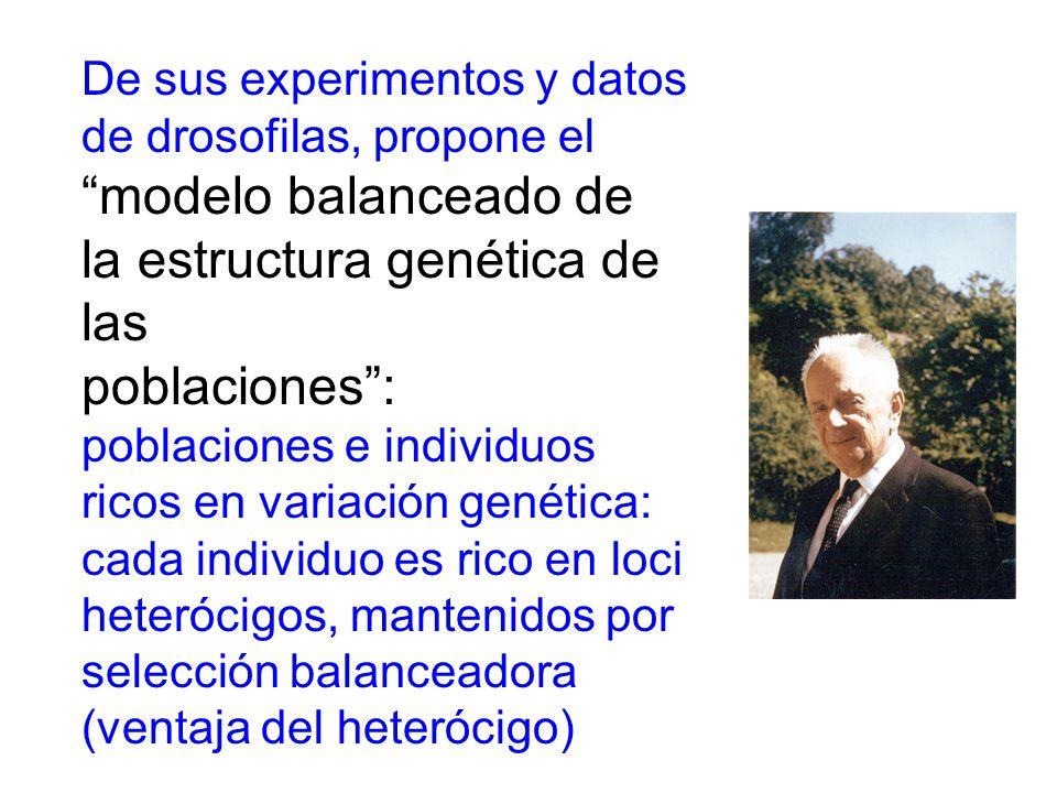 la estructura genética de las poblaciones :