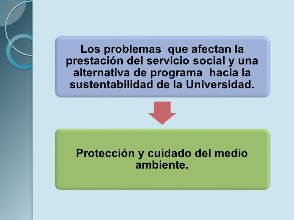 Protección y cuidado del medio ambiente.