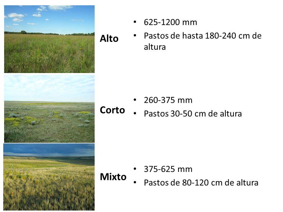 Alto Corto Mixto 625-1200 mm Pastos de hasta 180-240 cm de altura
