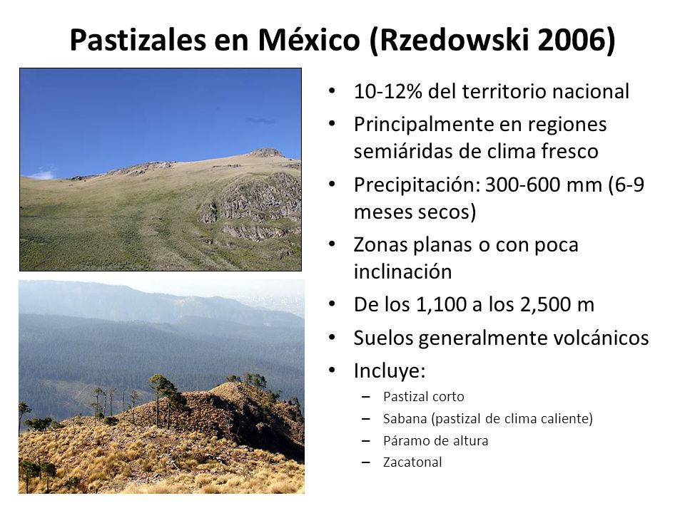 Pastizales en México (Rzedowski 2006)
