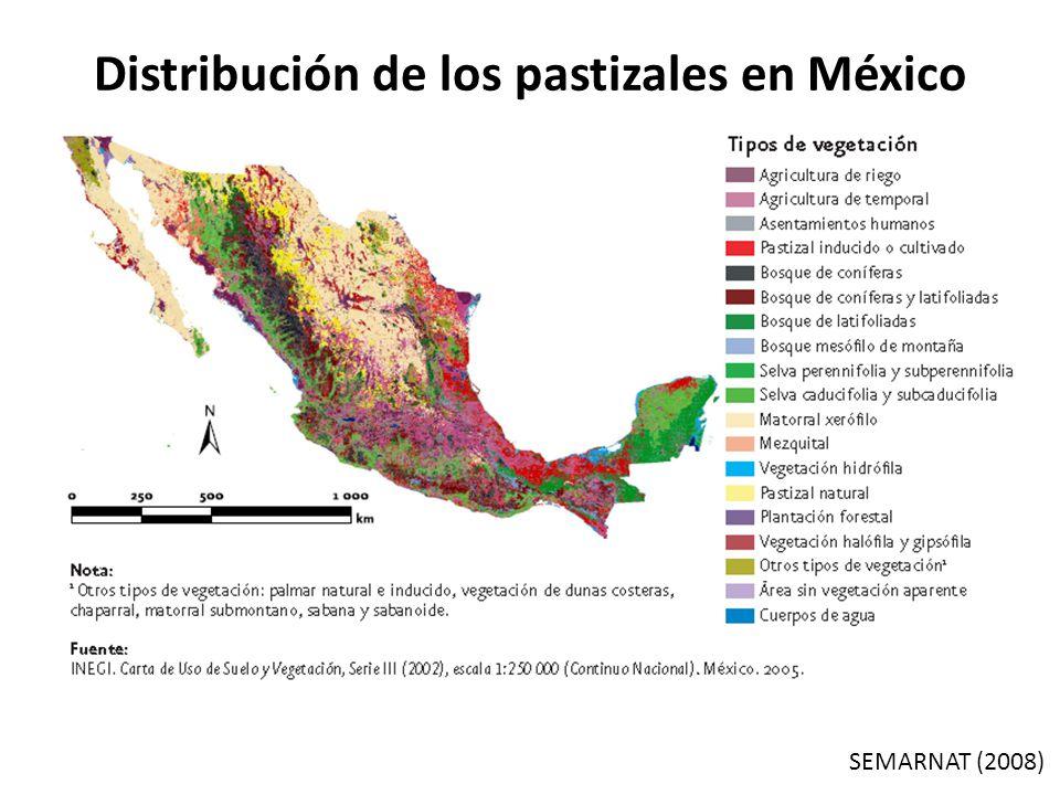 Distribución de los pastizales en México