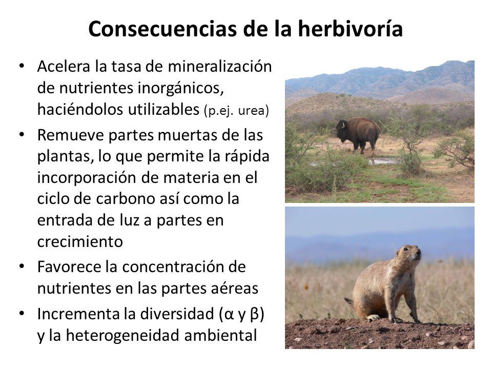 Consecuencias de la herbivoría