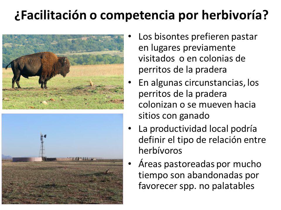 ¿Facilitación o competencia por herbivoría