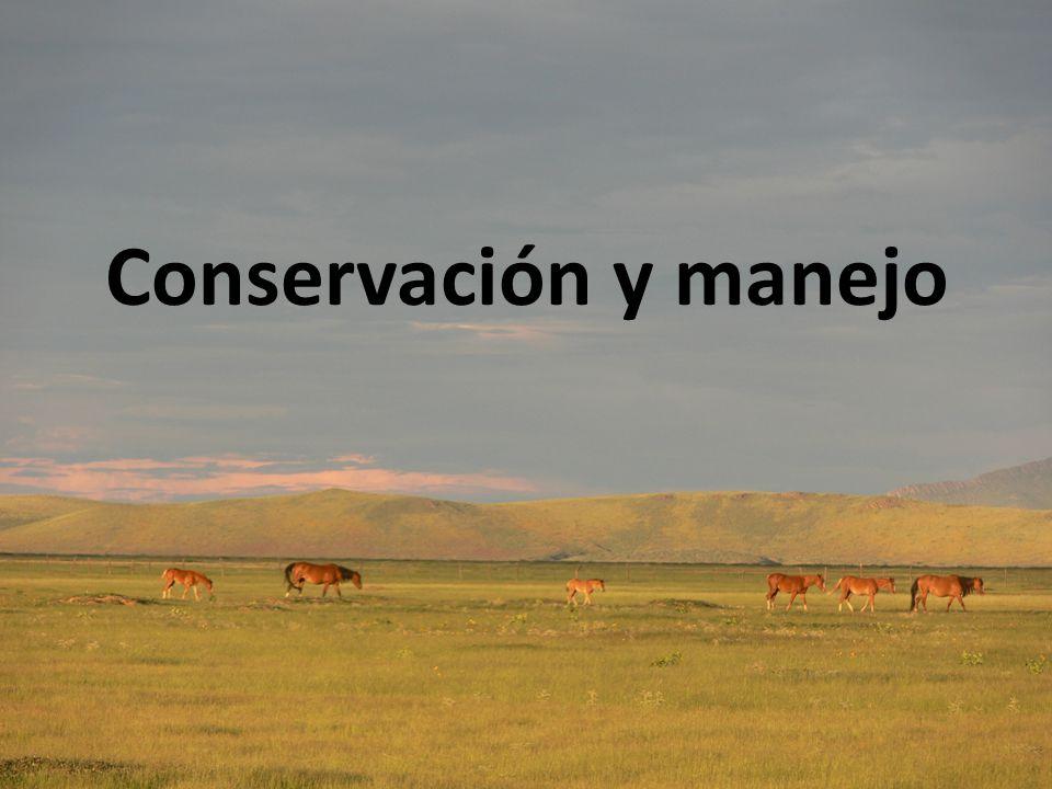 Conservación y manejo