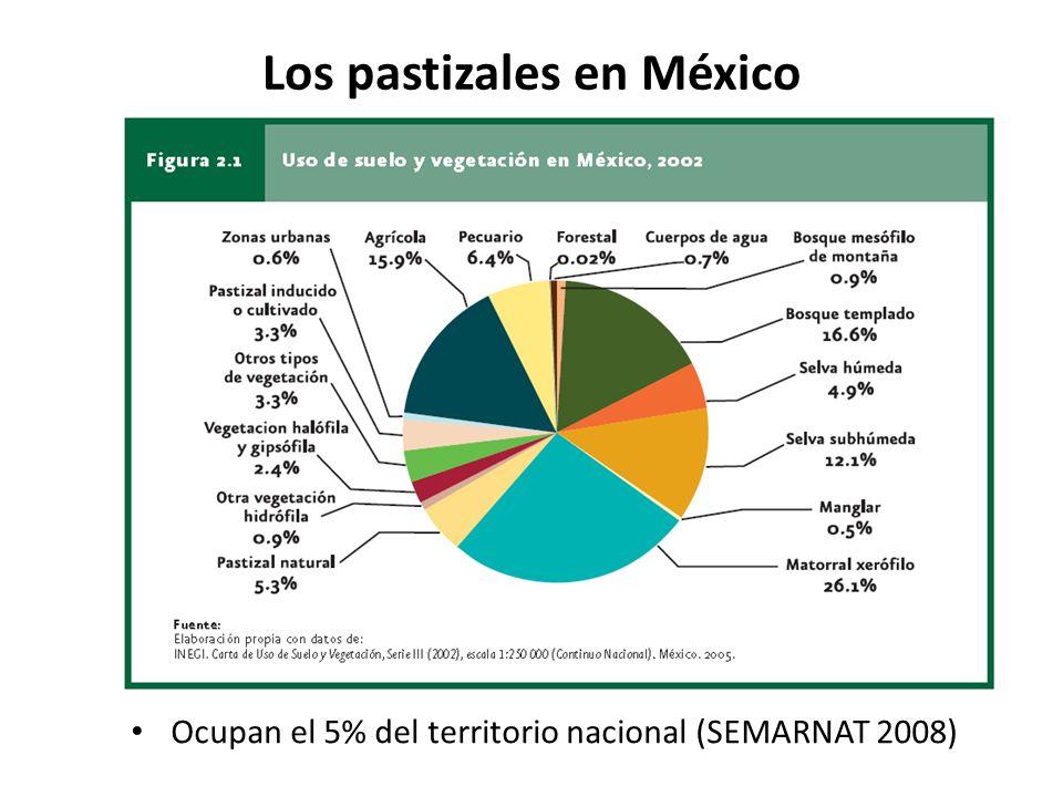 Los pastizales en México
