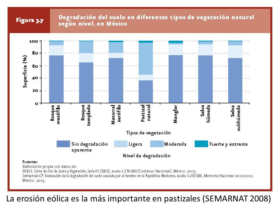 La erosión eólica es la más importante en pastizales (SEMARNAT 2008)