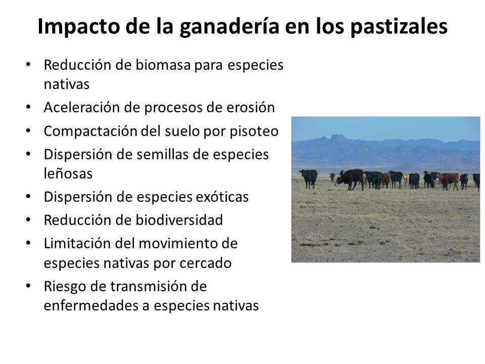 Impacto de la ganadería en los pastizales