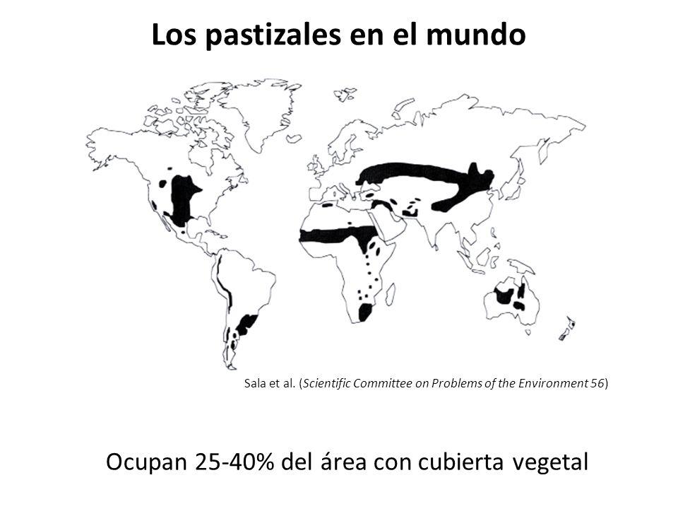 Los pastizales en el mundo