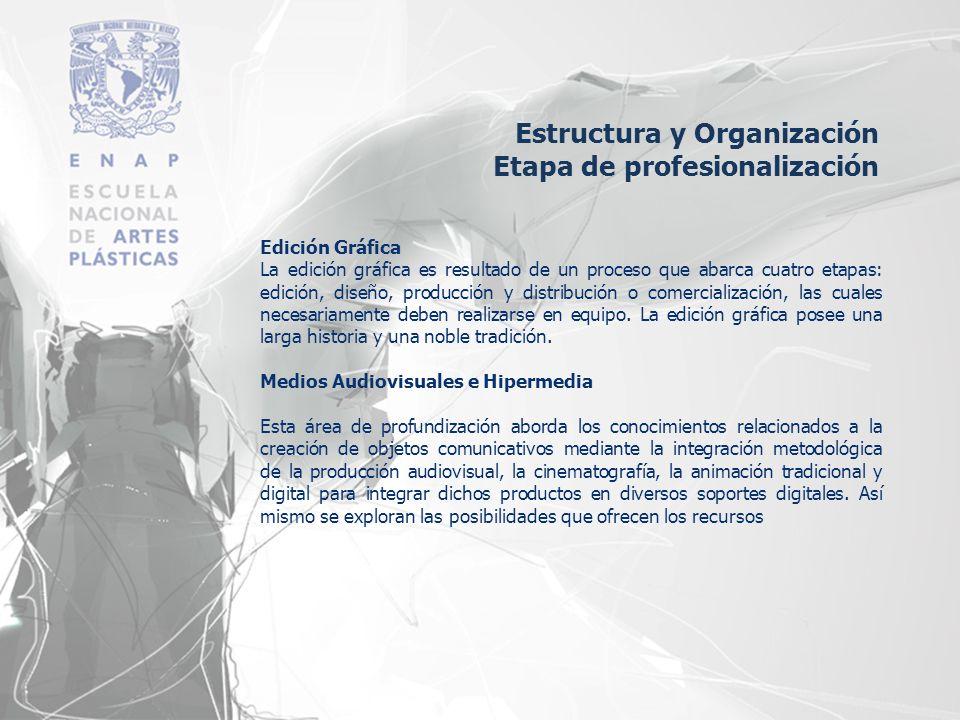 Estructura y Organización Etapa de profesionalización