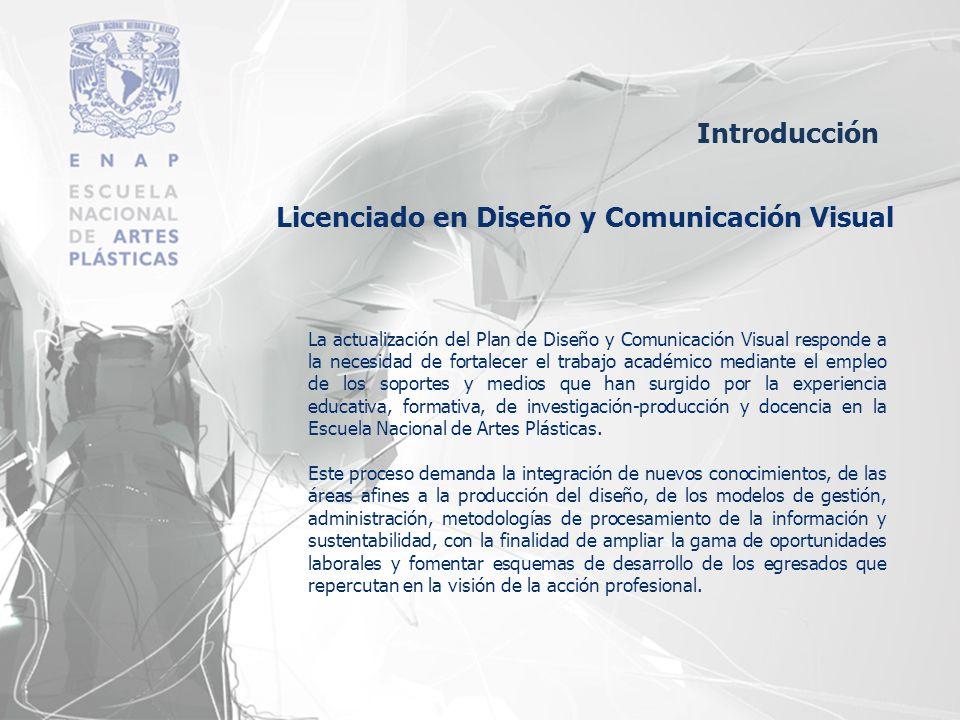 Licenciado en Diseño y Comunicación Visual