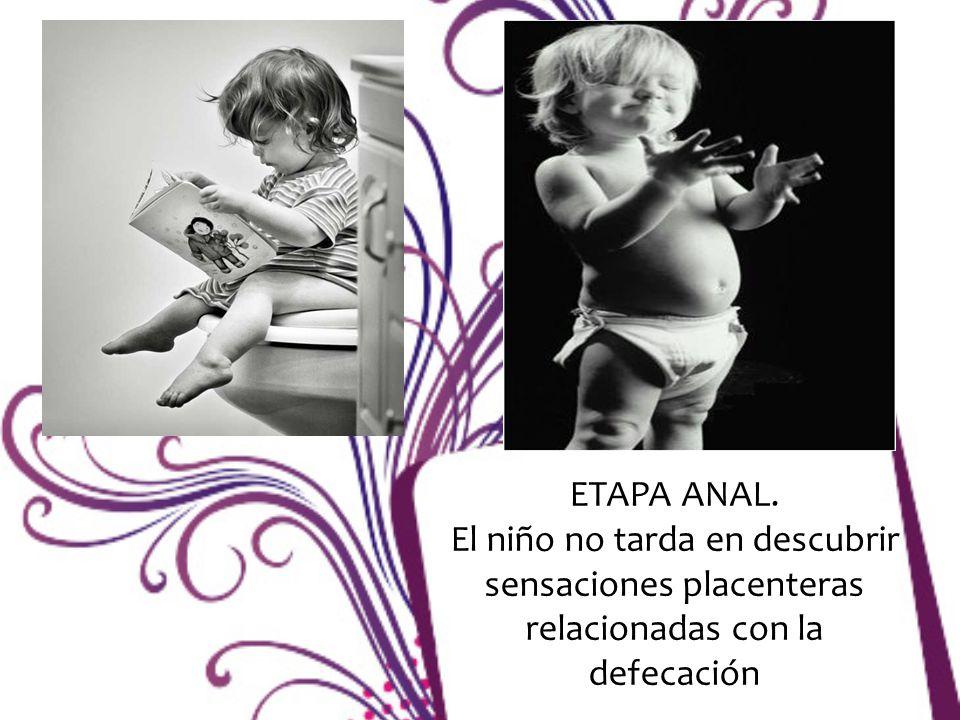 ETAPA ANAL. El niño no tarda en descubrir sensaciones placenteras relacionadas con la defecación