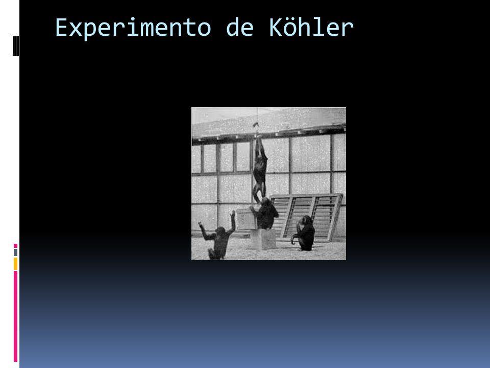 Experimento de Köhler