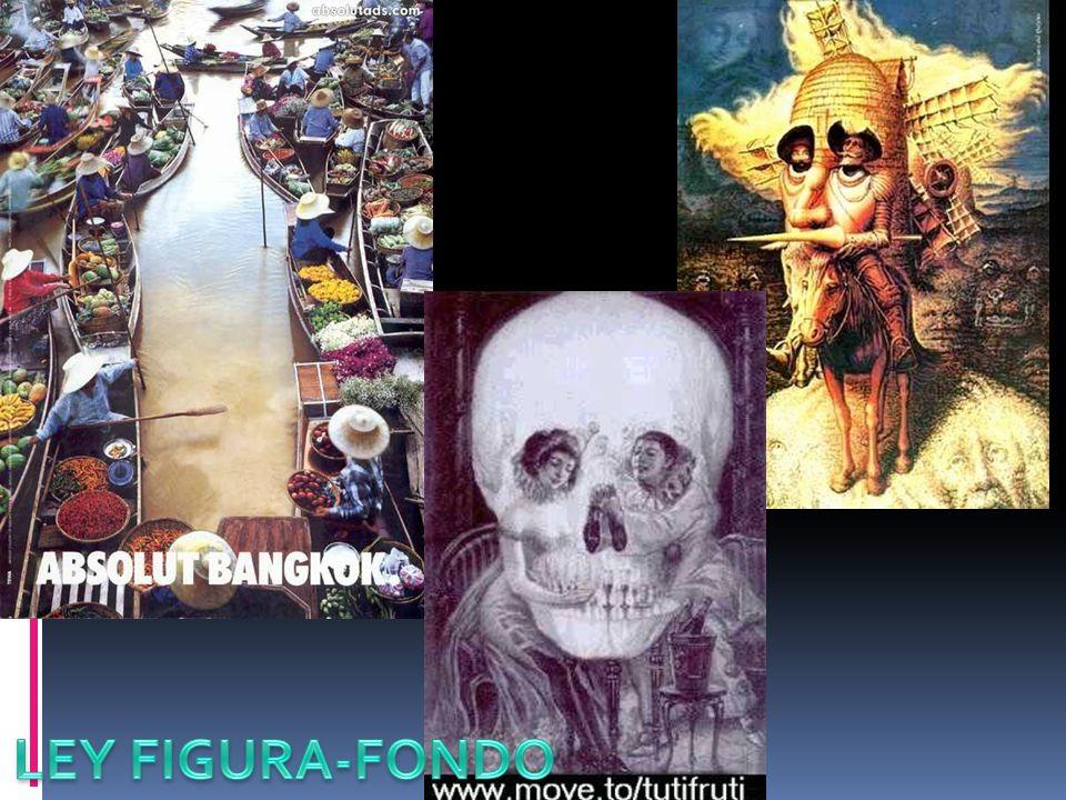 LEY FIGURA-FONDO