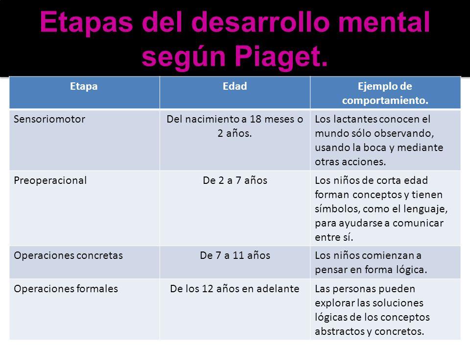 Etapas del desarrollo mental según Piaget.