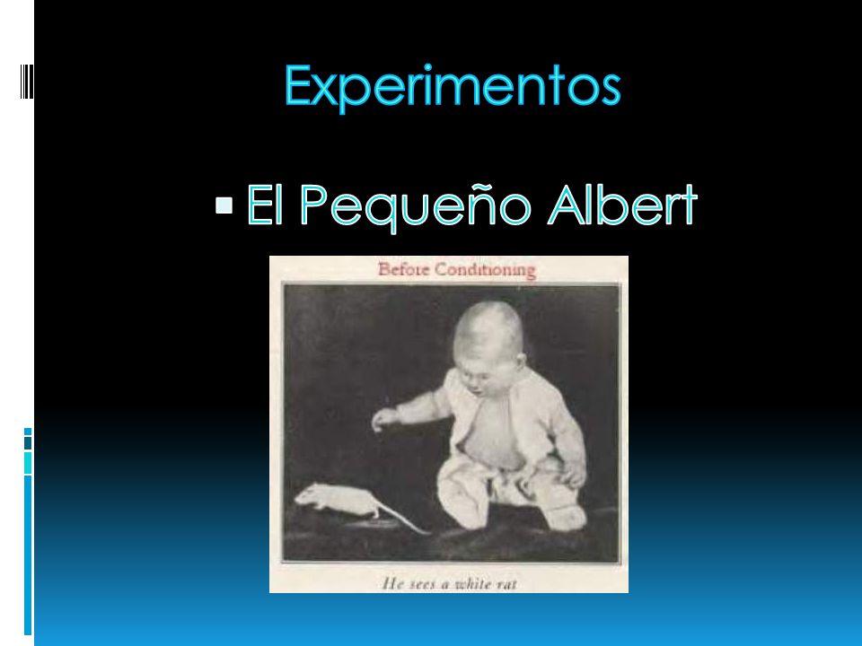Experimentos El Pequeño Albert