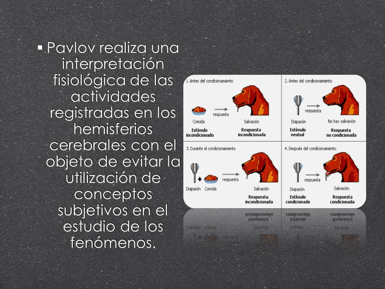 Pavlov realiza una interpretación fisiológica de las actividades registradas en los hemisferios cerebrales con el objeto de evitar la utilización de conceptos subjetivos en el estudio de los fenómenos.