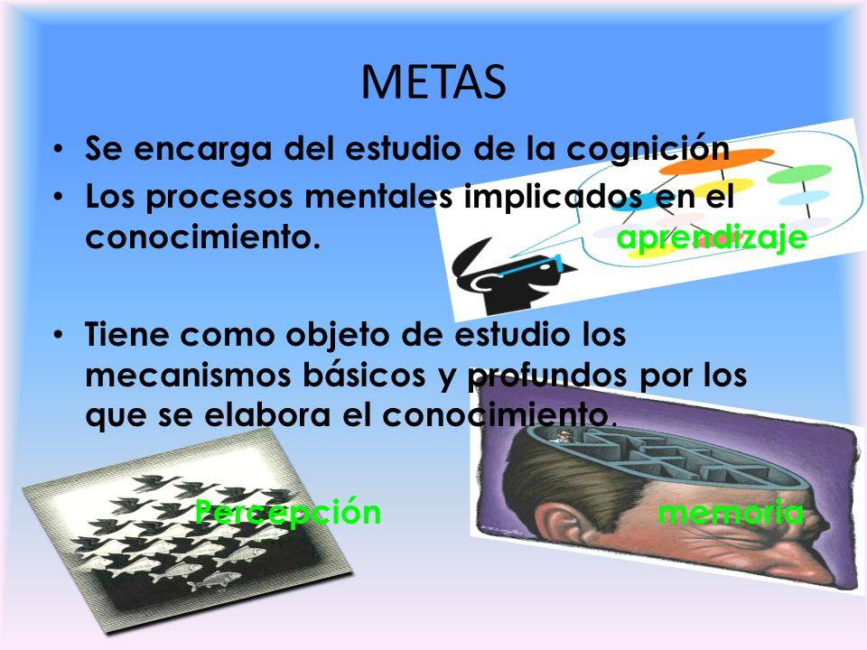 METAS Se encarga del estudio de la cognición