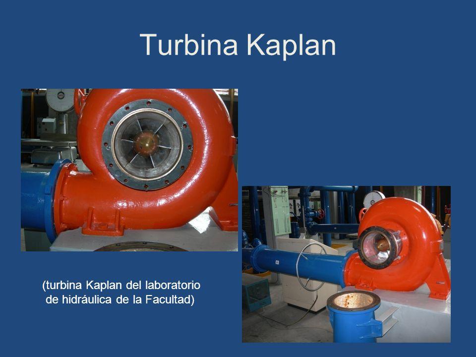 Turbina Kaplan (turbina Kaplan del laboratorio