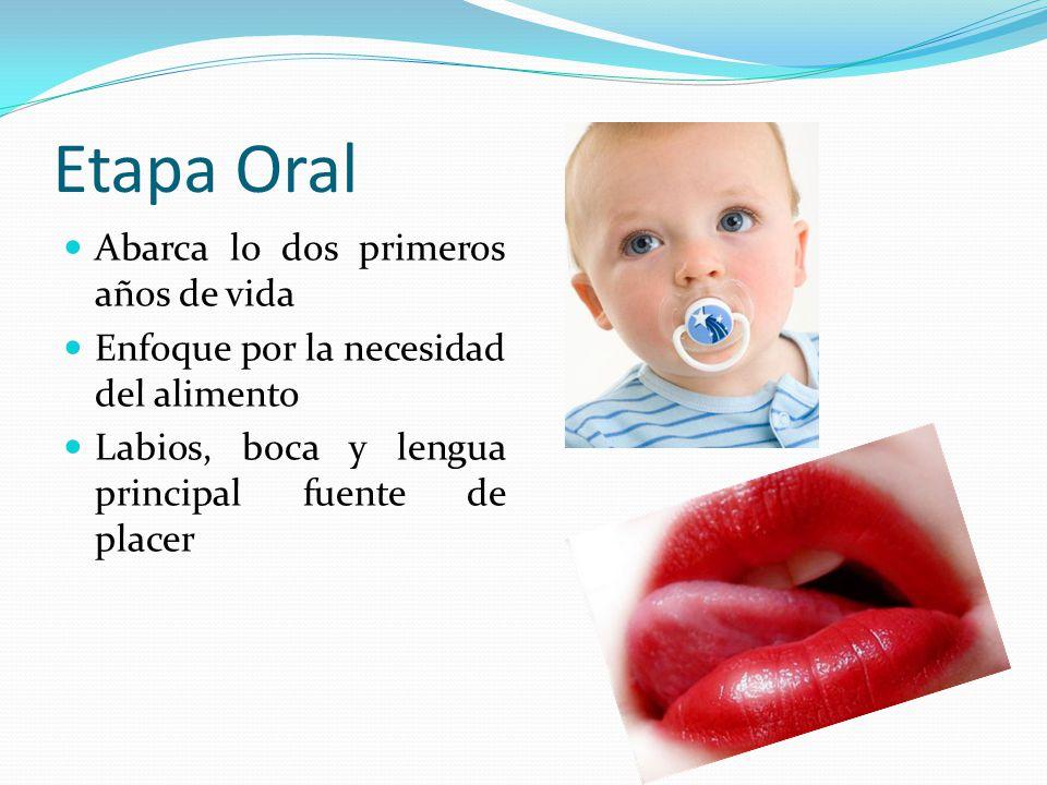Etapa Oral Abarca lo dos primeros años de vida