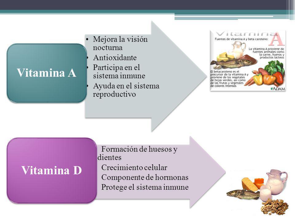 Vitamina A Vitamina D Mejora la visión nocturna Antioxidante