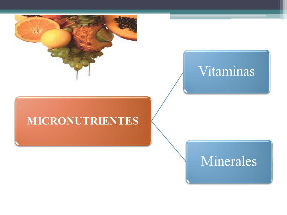 MICRONUTRIENTES Vitaminas Minerales