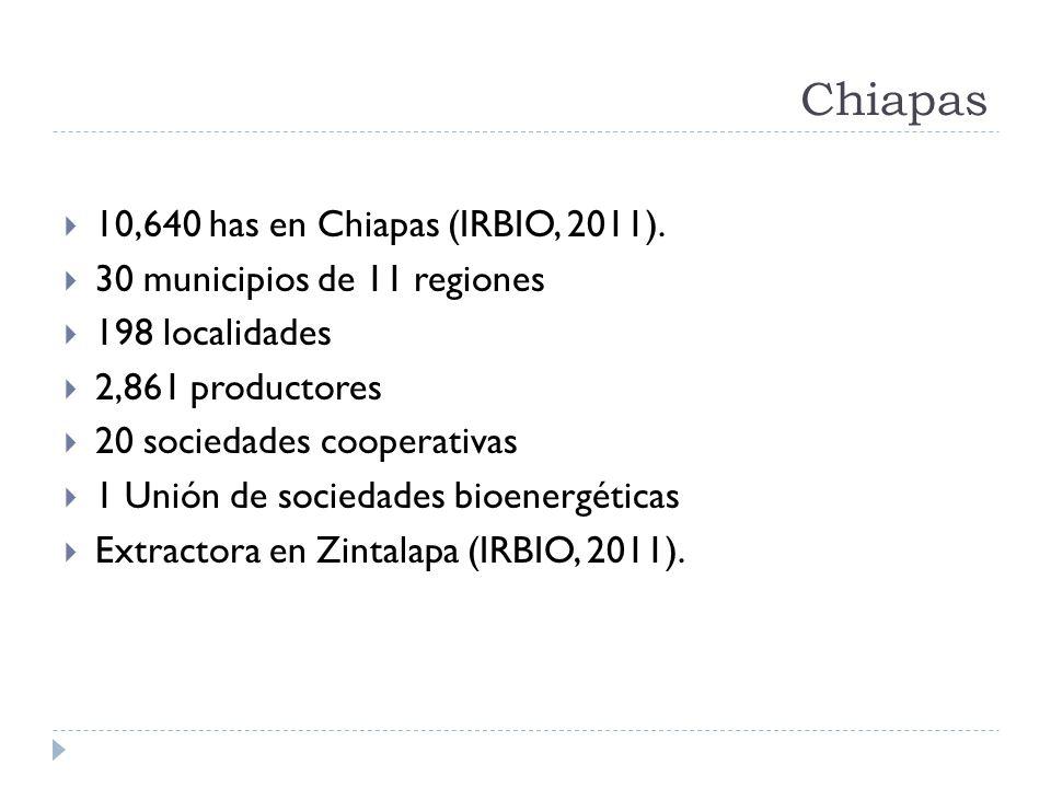 Chiapas 10,640 has en Chiapas (IRBIO, 2011).