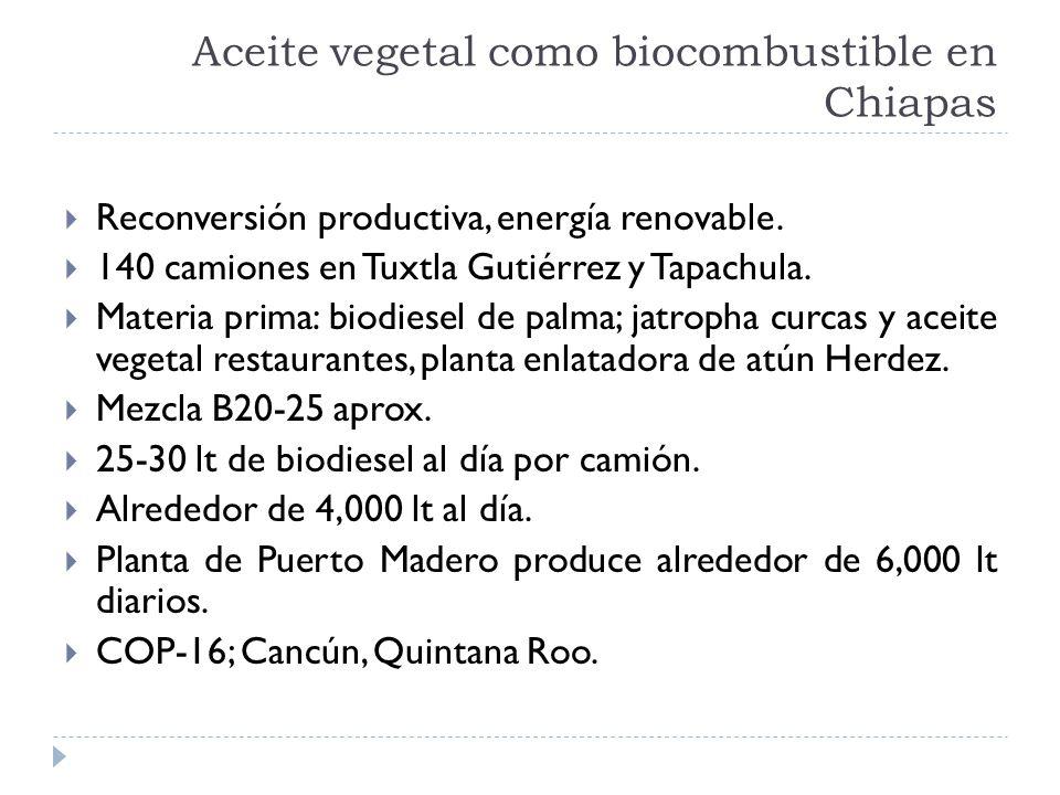 Aceite vegetal como biocombustible en Chiapas