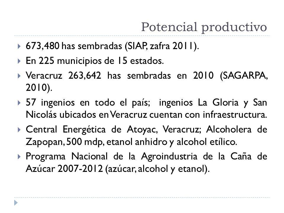 Potencial productivo 673,480 has sembradas (SIAP, zafra 2011).
