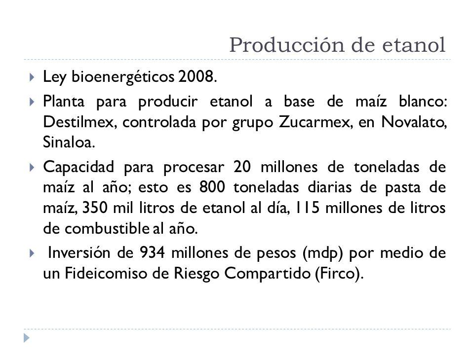 Producción de etanol Ley bioenergéticos 2008.